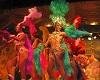 Ipe-amarelo, New York Brazilian dancers show